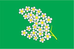 Флаг муниципального образования Черёмушки