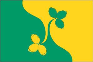Флаг муниципального образования Восточное Дегунино