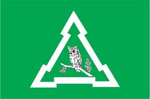 Флаг муниципального образования Восточное Измайлово