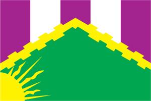 Флаг муниципального образования Новокосино
