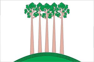 Флаг муниципального образования Проспект Вернадского