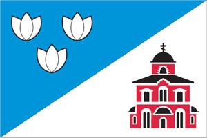 Флаг муниципального образования Савёлки